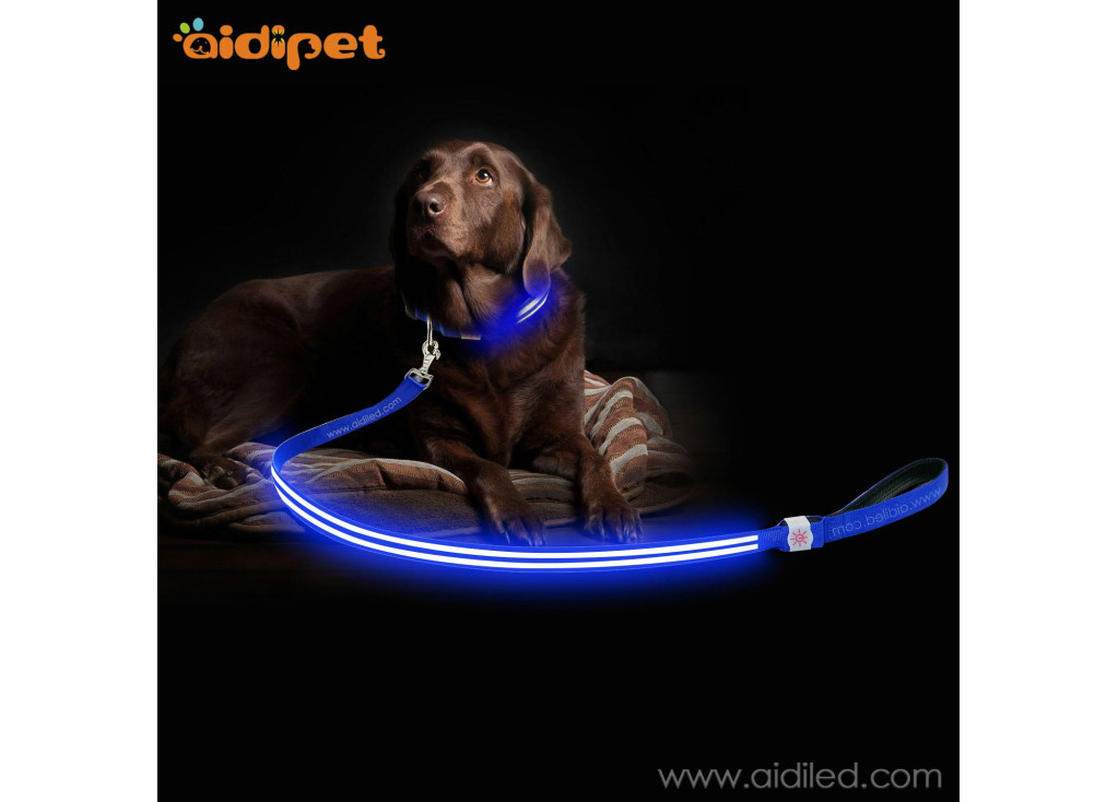 Why You Should Buy From a Store For Your Low Price Flash Dog Leash