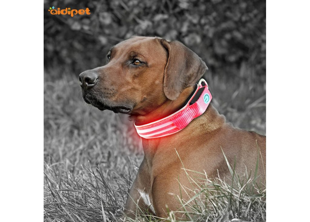 How Rechargeable LED Polyester Webbing Pet Collar Works