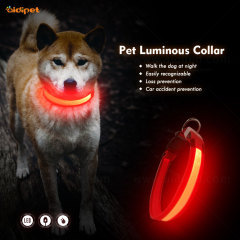USB Rechargeable Glowing Pet Dog LED Collar for Night Safety