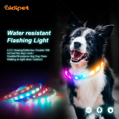 Eco-friendly Pet Supplies Mesh Led Dog Collar with Light on sale  march event