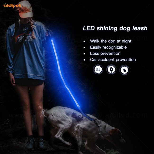 Hot Sale Fashion LED Flashing Light Dog Leash