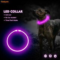 Flea Fancy LED Dog Head dog collar in stock