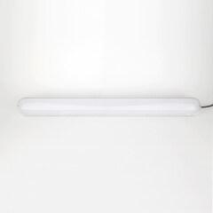 FLN series Fixture Lamp