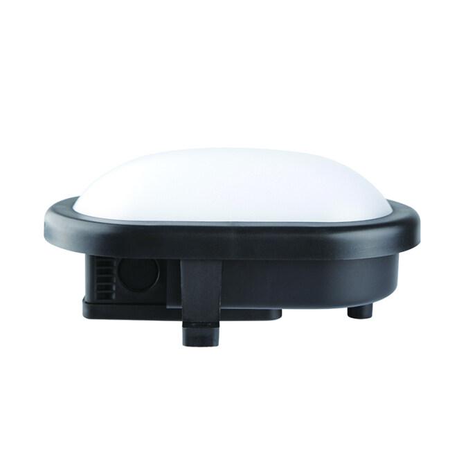 MTS Series Bulkhead Lamp