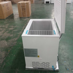 Wholesale Big Size 251L Commercial Chest Freezer with Lock and Light