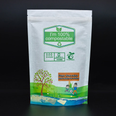 Shenzhen Factory Customize Biodegradable Laminated flexible packaging compostable pouch packaging with zipper for pet food