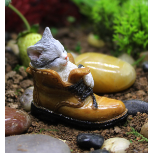 A Kitten In A Shoe