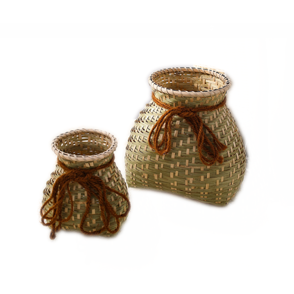 Basket Vase For Plants & Flowers