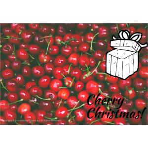 Christmas Gift Cards 10cm*15cm Cherry Christmas