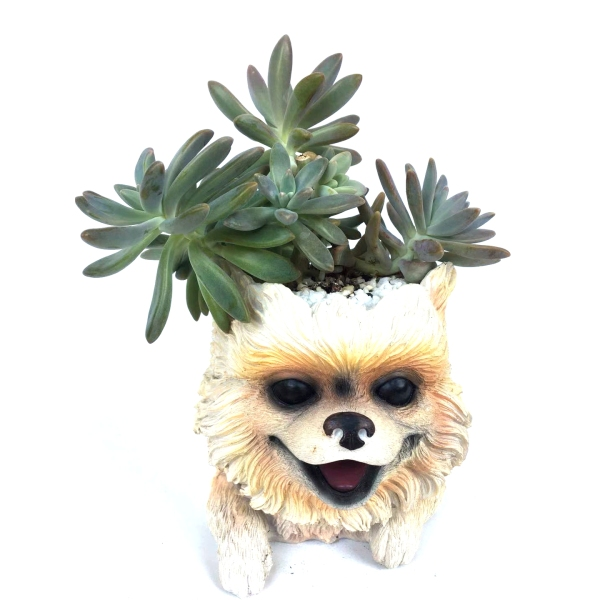 Cute Puppy Dog Pot