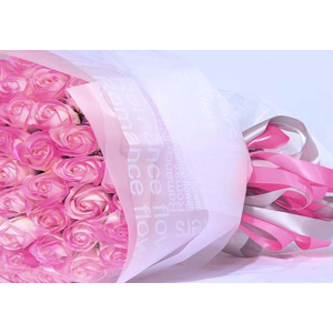 Silky Smooth Waterproof Flower Wrapping Sheets With English Printing Pack 20