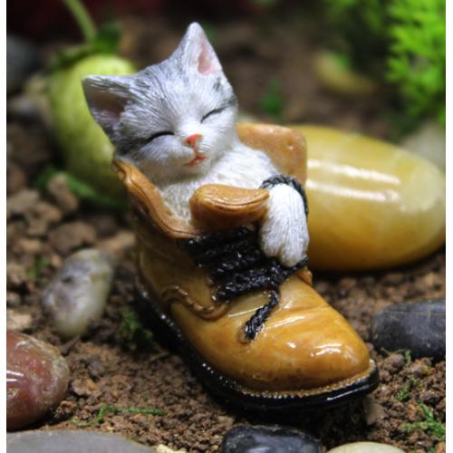 A Kitten In A Shoe