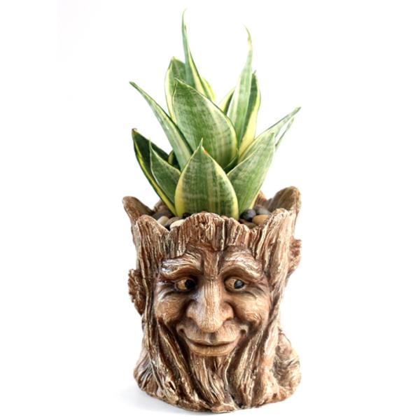 Carving on Stump Man Head Creative Plant Pot