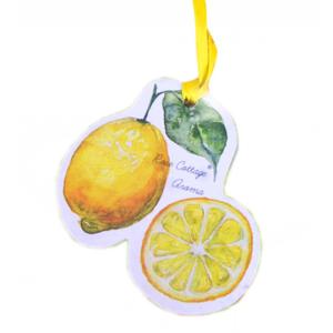 Fruit Car Freshner With Fruit Fragrance
