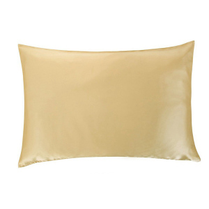 Wholesale Living Room Custom 100% Mulberry Silk Pillowcase 22mm Pure Silk Pillow Cover