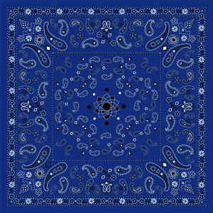 Custom Scarves Pattern-Paisley