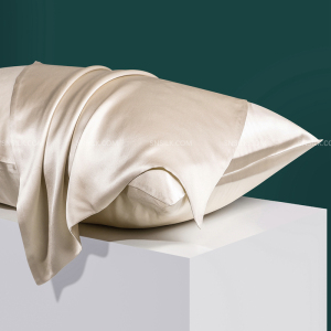 Luxury 22 Momme 100% Mulberry Silk Pillowcase