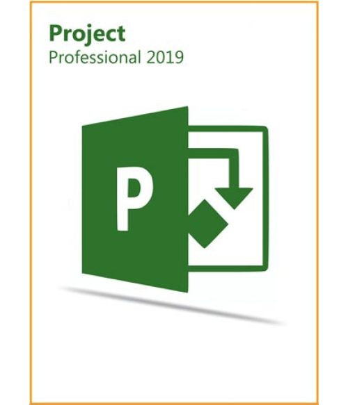Project Pro Professional 2019 Key Global