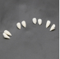 1 Pair 4 size Dentures Props Halloween Costume Props Party Environmentally Friendly resin Vampire Teeth Fangs