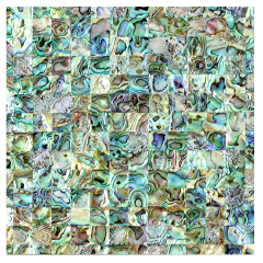 Special Offer Natural Green  Abalone Shell Mosaic Tile Freshwater Pearl Mop Mosaics For Hotel Project