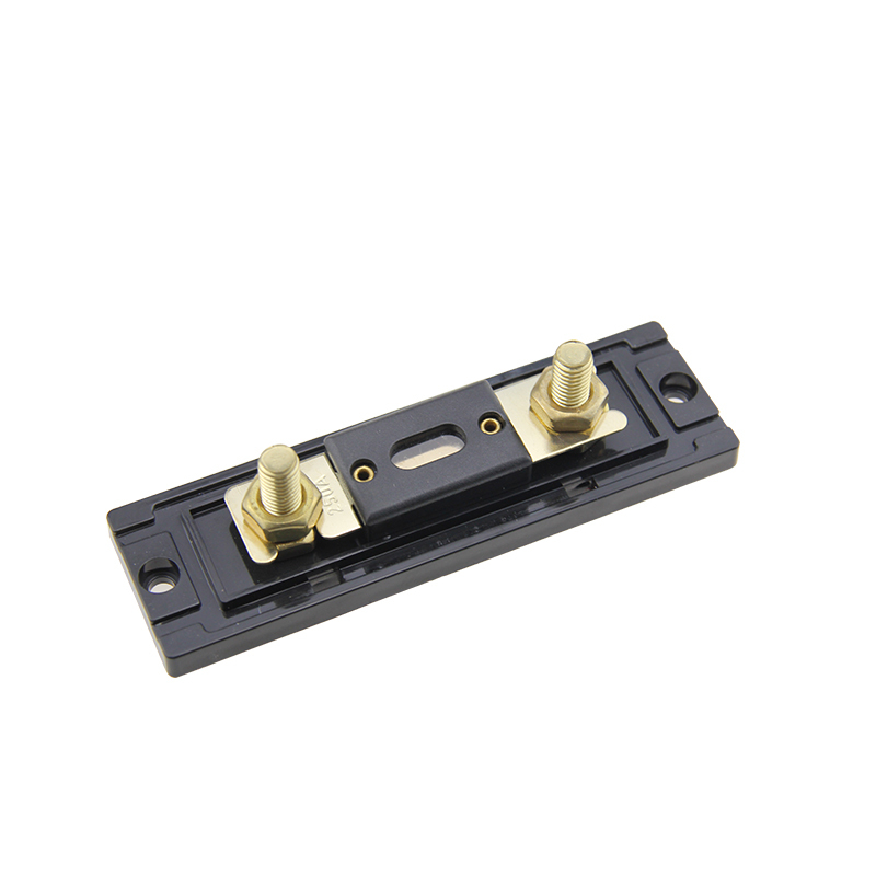 panel mount gold plated auto ANL car audio fuse holder with fuse