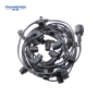 Holiday Decoration garland led string light 10m  B22 sockets outdoor waterproof string light