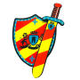 key foam high quality foam sword and shield toy
