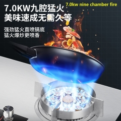 Stainless Steel Gas Cooker Household 9-chamber Gas Stove Table Embedded Dual Purpose Double Timing Lpg Natural Gas Range