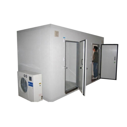 FR-CR03B 30CBM Truck Industrial Vegetable Fruit Freezer Cold Room with Condenser