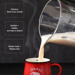 TM-904 Heating Blender 2020 Top Kitchen Multi-purpose Food Mixing Machine Blending Function Juice Stir Ice Crusher Mixing Mixer