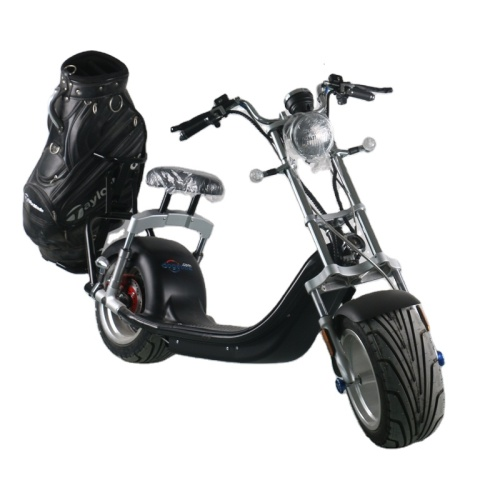 2020 new product Fashionable Electric Bicycle 1500/3000 Watt Electric Scooter For Adults 2 Wheel E-bike