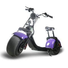 E Mark CE approved cheap citycoco eec motorcycle electric scooter for sale