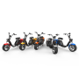 EEC chopper citycoco motor cycle motorcycle off road electric scooter for sale