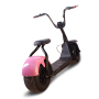 Popular cheap e citycoco off road motorcycle big wheel electric scooter