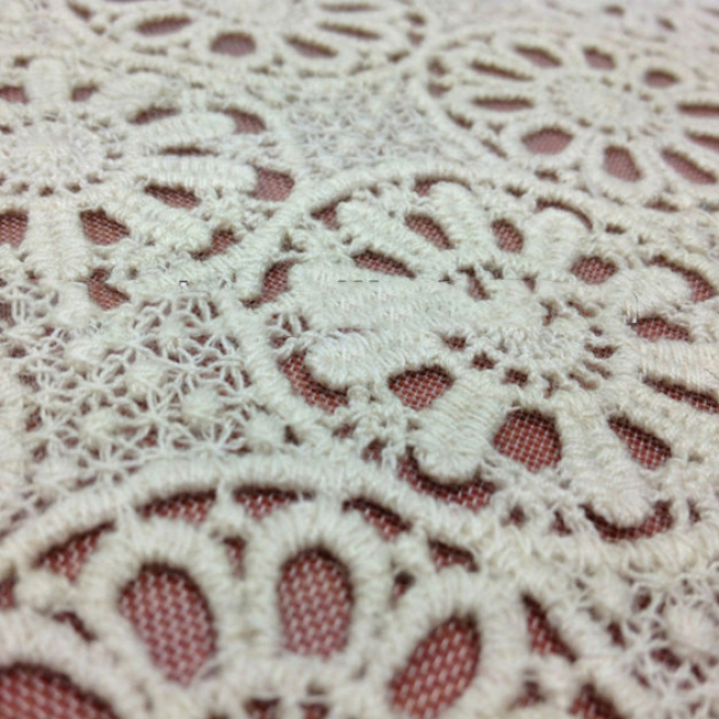 French Crocheted Lace Fabric Textile White Lace Fabric