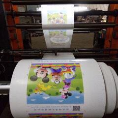 zhuding non woven fabric printer roll to roll flexo printing machine