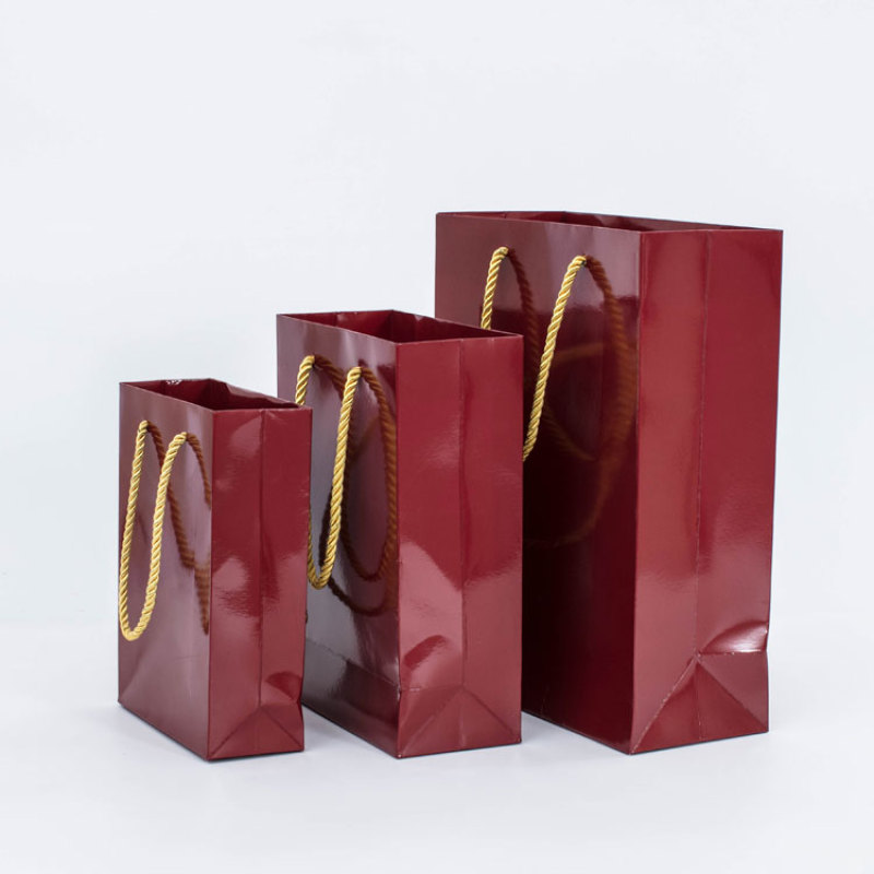Free sample custom logo red paper gift party shopping bag with multi choice rope handle