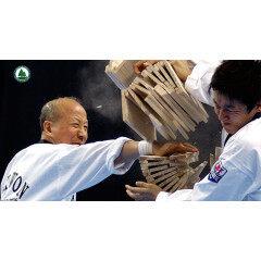 Paulownia Breaking Boards For Martial Arts Karate Taekwondo
