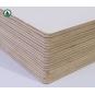 Hot sale Melamine Faced Plywood/Hardwood Plywood for Furniture Manufacturer Price