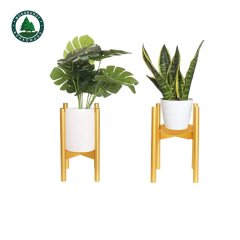 Super Simple Style Adjustable Beech Wood Plant Stand