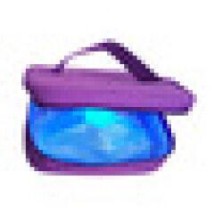 Portable Disinfection UV Bag Sterilizer