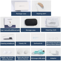 Digital Programmable Ric Hearing Aid of Seniors with Enhance Speech Sound Amplifier