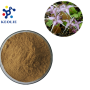 Improve Sexual Time Natural Plant Extract Goat Weed Extarct icariin 10%-98%