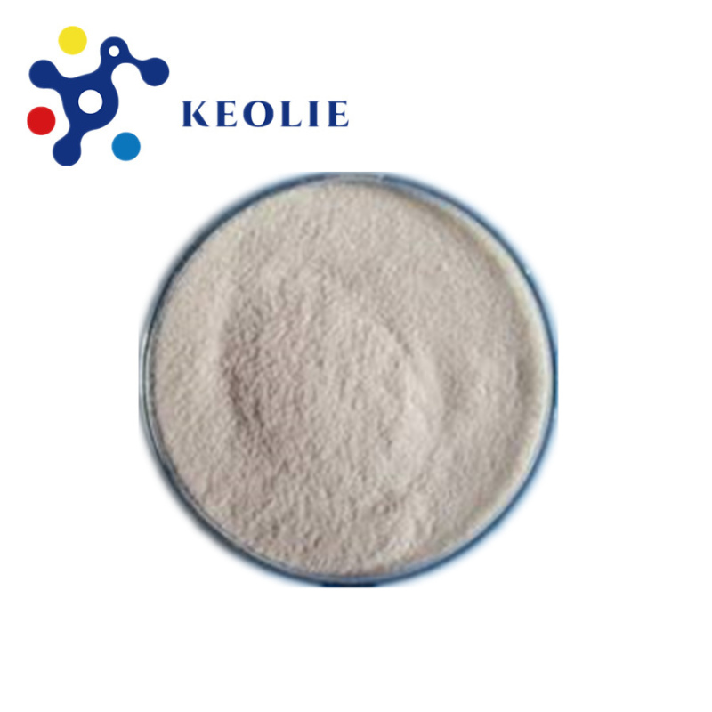 Keolie Supply lactase enzyme powder