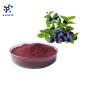 100% Water Soluble Acai berry Brazil Powder /Brazil Acai Berry Extract powder