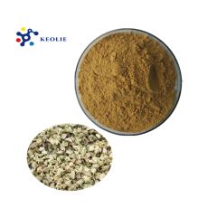 Best Price for Natural Sexual Product Pant Extract Tribulus Terrestris Extract Powder Saponins 90%