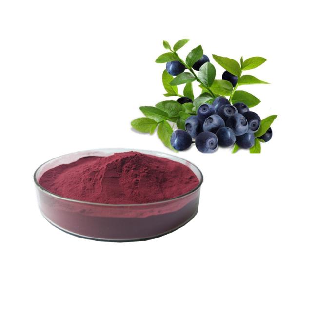Kosher Factory herb extract Natural Acai berry Extract powder/Euterpe Badiocarpa Extract powder