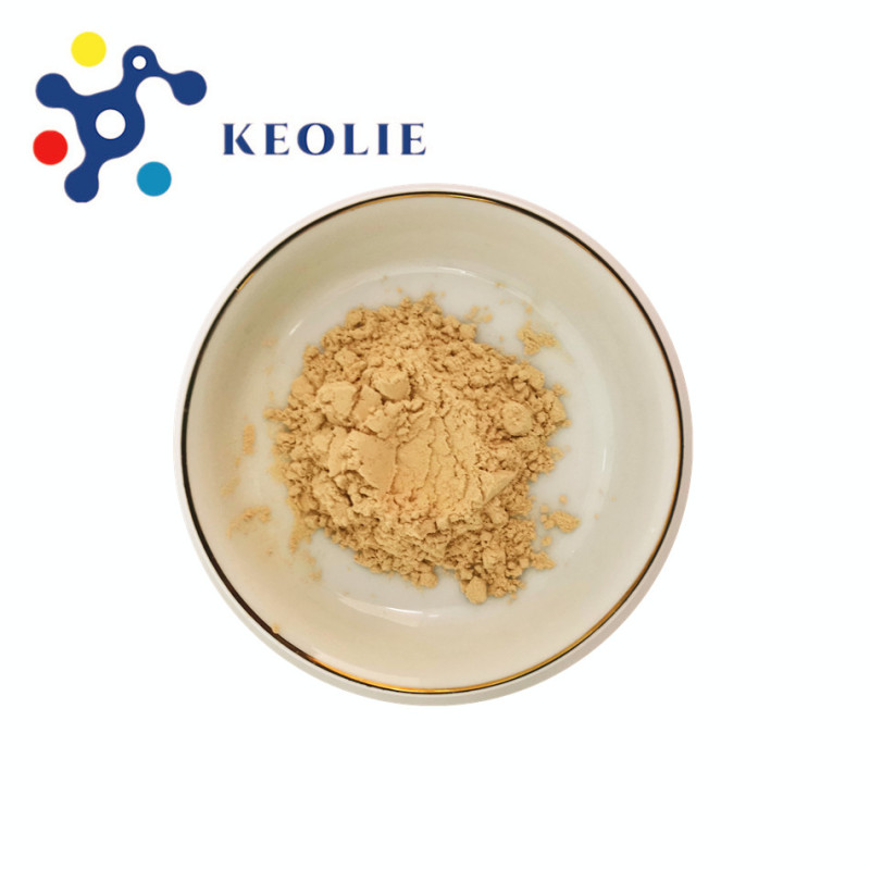 Top Quality Bacillus Subtilis Fermentation