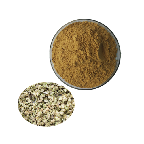 100% Pure Natural and Top Quality Tribulus Terrestris Extract Powder Tribulus Terrestris Extract With  Saponins 90%