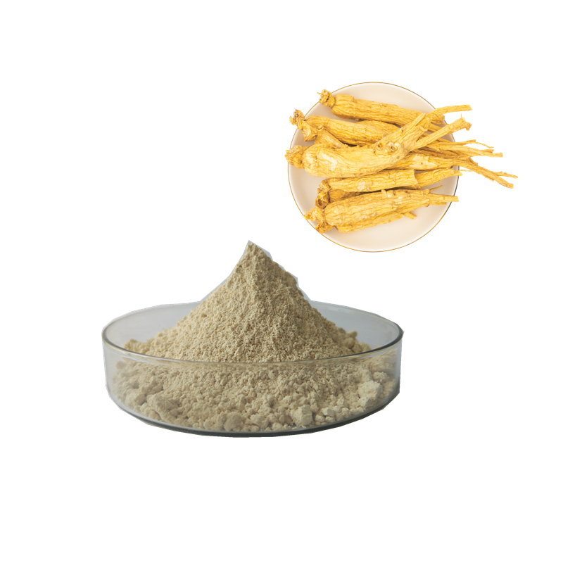 Top Quality korean red ginseng Root Extract Panaxoside Rb1 Panaxoside Rb3 Ginsenosides